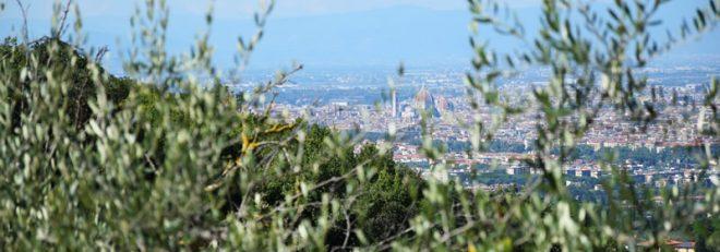 Perché correre sulle colline di Bagno a Ripoli?